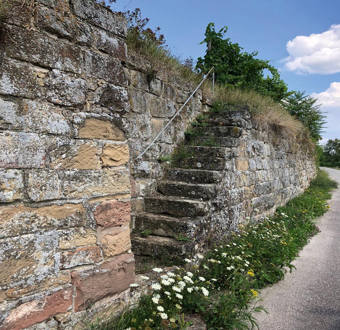 Wengertstäffala am Wartberg