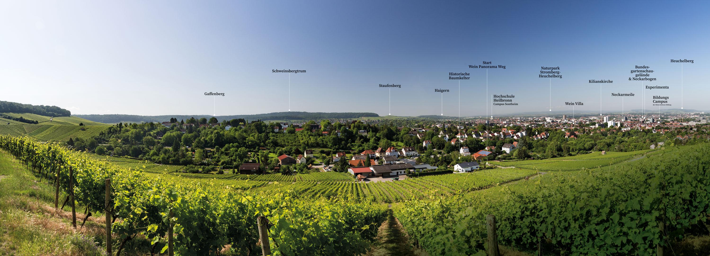 """Panorama """"Stadt im Grünen"""""""